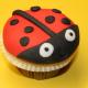 Marienkäfer-Cupcake