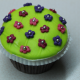 Blumenwiese-Cupcake